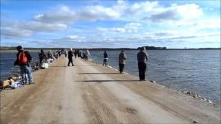 Play fishing w the perch patrol early ice 2012mp4 for Devils lake nd ice fishing