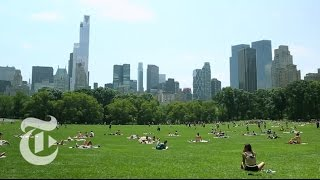 36 Hours in Central Park, New York   The New York Times