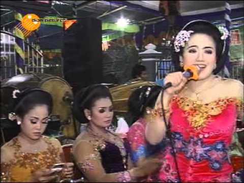 CINTA HITAM ERIN TAYANG - SUPRA NADA