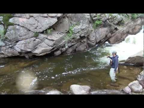 Big Fish, Small Stream. Fly Fishing Colorado May 13, 2012