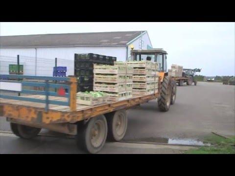 Agriculteurs, entre passion et colère - Zone Interdite