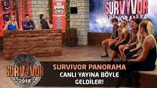 Gönüllüler Takımı yarışmacıları canlı yayına böyle geldi! | Survivor Panorama