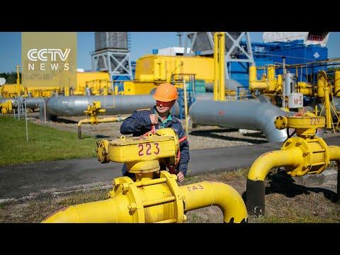 Russia halts gas supplies to Ukraine after talks break down