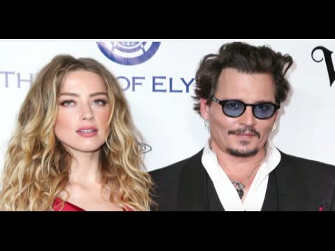 Johnny Depp, Amber Heard Apologize for Smuggling Dog