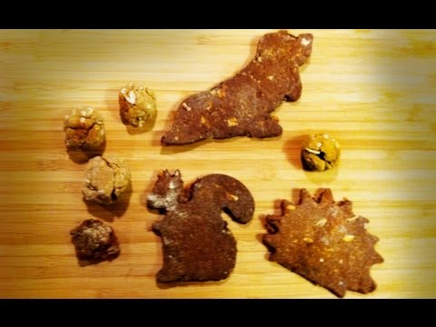 All-Natural Dog Biscuit Recipe