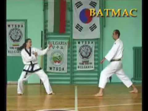 AMAWA / GM Robert Haritonov's Tang Shou Dao / Tang Soo  Do Team /  Hand and Kick Demo Techniques Image 1