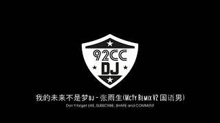 我的未来不是梦dj - 张雨生(McYy Remix V2 国语男)