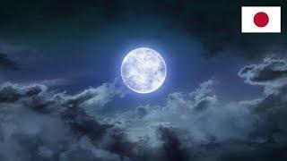 FINAL FANTASY XIV パッチ4.3トレーラー「月下の華」
