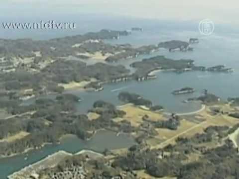 Цунами и землетрясение в Японии 2011-11 марта