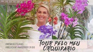 TOUR PELO MEU ORQUIDÁRIO | ANA HICKMANN