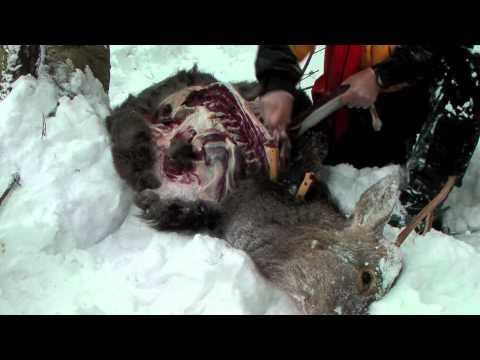 Deer hunting knives #27 / BR Highland Special, Classic Lite Hunter, & Bravo Necker2