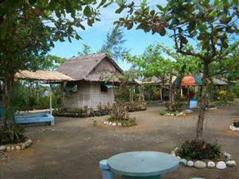 zambales beach resort with swimming pool property for sale farm garden beach resort zambales