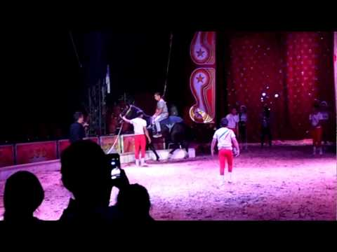 Circo hermanos Fuentes Gasca en Panguipulli