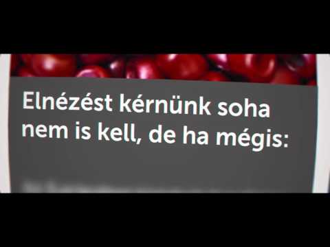 ÁKOS - HELYREIGAZÍTÁS (szöveges Videó)