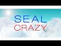 Seal Crazy Lyric Video mp3
