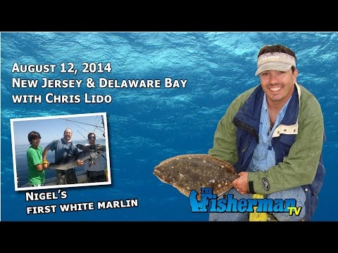 August 12 New Jersey/Delaware Bay Fishing Report