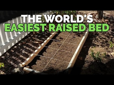 How to Build The World's Easiest Raised Bed Garden (Cheap)