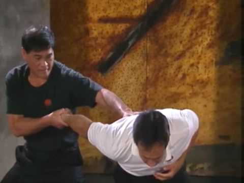 Bruce Lee's Fighting Method 5 Image 1