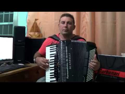 29 Luiz Gonzaga - Xote Ecológico - Intep - Fernandinho Do Acordeon video