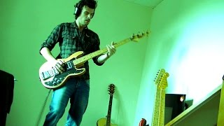 The Thin Ice (Pink Floyd cover)