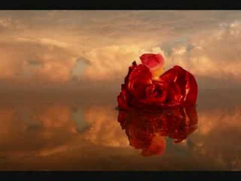 Songtext von Eros Ramazzotti - Un