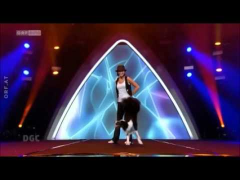 "Border Collie ""Esprit"" dances "" DOG DANCE "" in Austrian Talent Show "" The Great Chance """