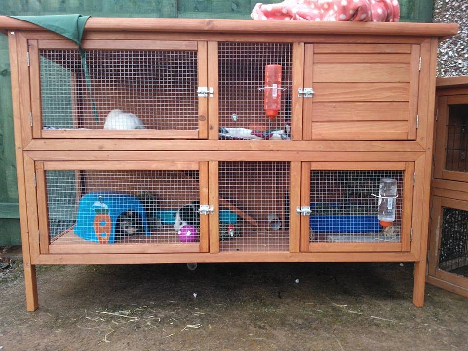 Guinea Pig hutch tour | August 2013 - YouTube