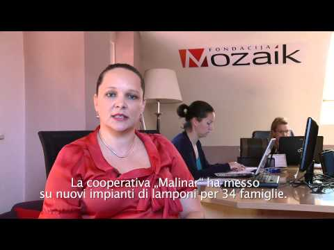 UniCredit Foundation projects in 2012 Italian