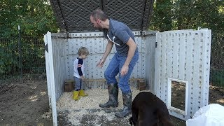 Teaching Clark How To Clean The Chicken Coop