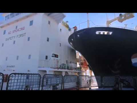 Sea Sheperd 2013 last news feb 24 Japan Sends Icebreaker To Southern Ocean Whalers
