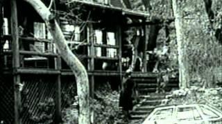 Chameleon - Trailer
