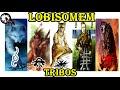 As Tribos De Lobisomem Parte 1 Tribos Perdidas mp3