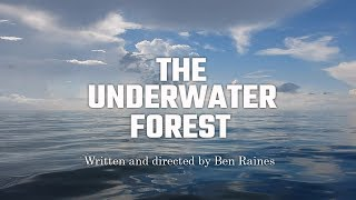 The Underwater Forest
