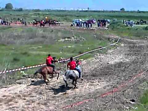 tradicionalna trka na konji gurgovden  vasilevo.MP4