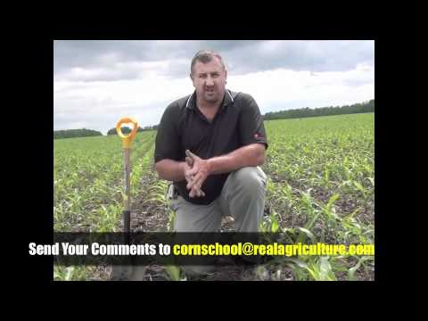 Corn School - Soil Health and Early Planting's Role in Reaching 300 Bushel Yields