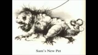 SCARY STORY SAM'S NEW PET