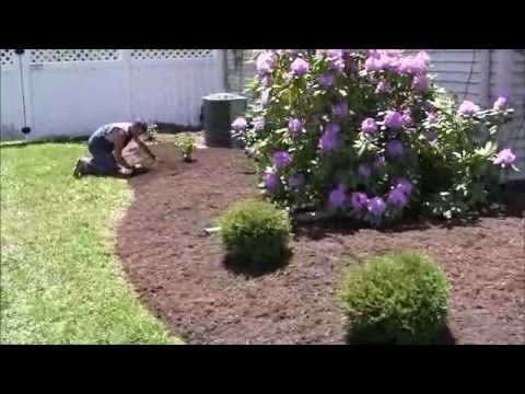 Re-Landscape Your House