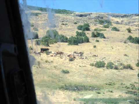 Kürtçe - Dalhançer Köyü - Cennet Şehirsin Malatya (METİN DALHANÇER)