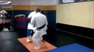 kyokushin punch-low kick focus