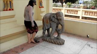 How To Hump an Elephant