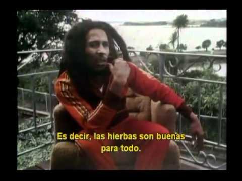 Bob Marley, la verdad sobre la marihuana