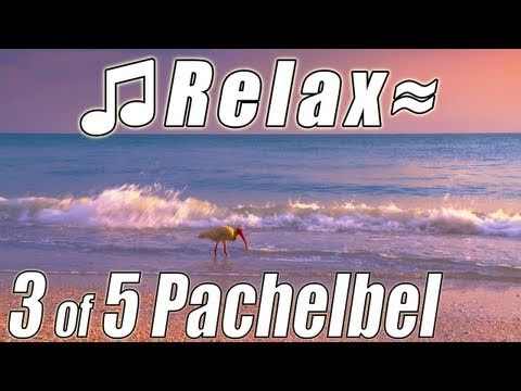 Canon in D PACHELBEL Classical Music #3 Gospel Christian Wedding...