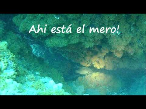 Buceo, Inmersi&Atilde;&sup3;n, zona de inmersi&Atilde;&sup3;n, Granada, Maro - Cerro Gordo