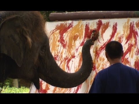 Awesome Elephant Artist pt1 - Extraordinary Animals - Earth