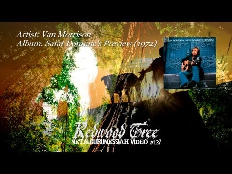 Van Morrison - Redwood Tree