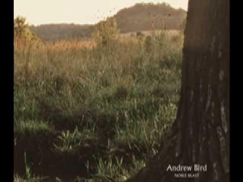Andrew Bird - Souverian