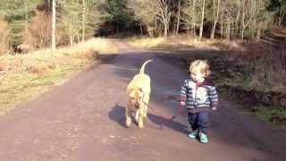 Legjobb barátok - kutya, gyerek és a pocsolya