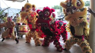CWS Chinese New Year 2014 Video Teaser