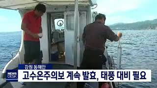 강원 동해안 고수온주의보 계속 발효