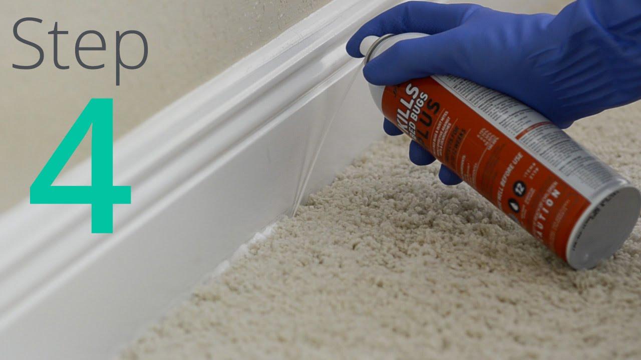 Como eliminar los chinches paso 4 4 spray y polvo for Como eliminar chinches de cama